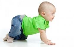 Дети учатся ходить благодаря более высокой скорости передвижения