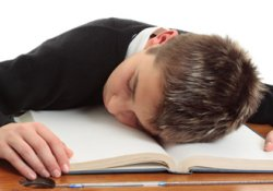 Сон после учебы улучшает запоминание нового материала