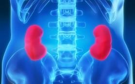 После трансплантации почки детям лучше избегать применения стероидов