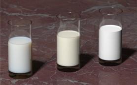 Обезжиренное молоко способствует набиранию веса у детей