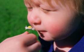 Детскую аллергию провоцируют бактерии: убирайте чаще!