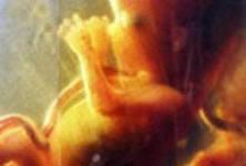 Околоплодная жидкость помогла новорожденным с воспалением кишечника