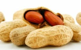 Детскую аллергию на арахис победили с помощью пластыря