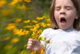Аллергия у детей – источники и профилактика