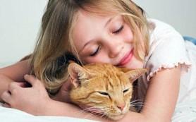 Стоит ли покупать своему ребенку собаку или кошку