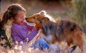 Найдено объяснение противоаллергическому влиянию собак на детей