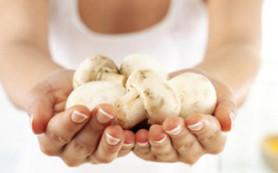 Эксперты: грибы опасны для детей и беременных женщин
