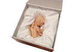 Дочки-матери по-американски: 3-D фигурки еще не родившихся детей