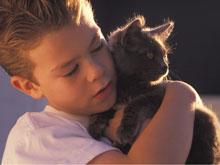 Психологи: детям просто необходимо иметь домашнее животное