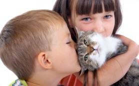 Лучший способ доставить ребенку радость — это домашний питомец!
