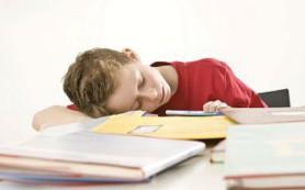 На успеваемость детей влияет профессия родителей