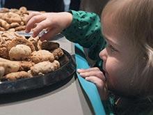 Печенье поможет сбросить вес тучным детям, убеждены эксперты