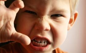 Агрессивный ребенок от двух до пяти: что делать