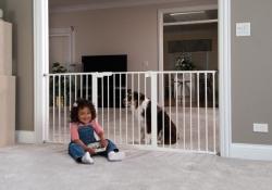 Враги или друзья? Защитные барьеры для детей