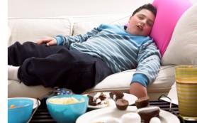 В Англии арестовали супругов из-за толстого сына
