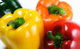 Ученые: дети, попробовав овощи в раннем детстве, охотно едят их всегда