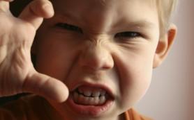 Ученые разработали приложение, которое поможет родителям справиться с детским гневом