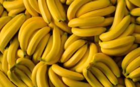 Ученые хотят накормить африканских детей полезными ГМО бананами