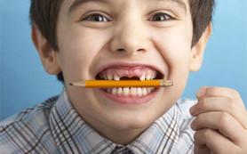Китайские ученые объяснили, почему нельзя грызть карандаши