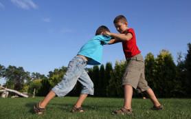 Жаренные куриные крылья увеличивают агрессивность детей – ученые