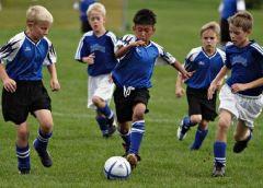 Спорт помогает ребенку стать умнее