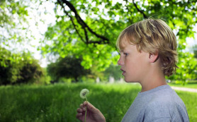 По основным параметрам физического развития дети, страдающие аутизмом, практически не уступают своим здоровым сверстникам