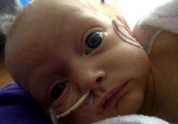 Американские врачи успешно пересадили печень 8-месячному ребенку