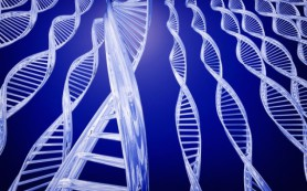 Учеными разработана методика, устраняющая неполадки в генах до зачатия