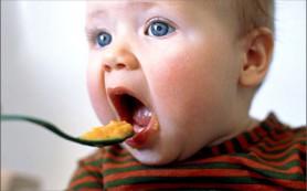 Время введения прикорма в рацион ребенка: советы