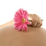 Как происходит развитие ребенка во время беременности