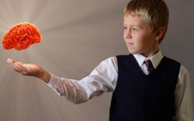 Уровень достатка семьи влияет на развитие мозга ребенка
