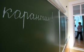 Во всех школах Смоленска карантин продлили до 2 февраля включительно