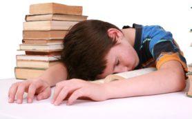 Чрезмерная учебная нагрузка приводит к близорукости у детей