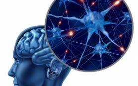 Дети, рожденные раньше срока, имеют риск проблем с головным мозгом