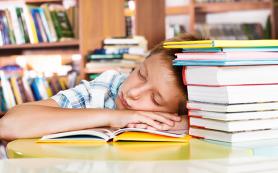 Дневной сон улучшает процесс обучения младших школьников