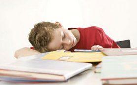 Успеваемость детей в школе зависит от степени их физической активности
