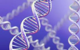 Ученые нашли ген, связанный с серьезным наследственным заболеванием у детей