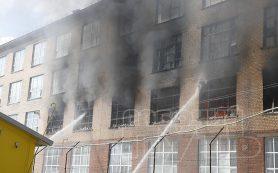 У погибшей во время пожара на фабрике «Шарм» смолянки остались двое несовершеннолетних детей