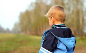 Что делать, если пропал ребенок: 12 главных шагов поиска и советы полиции