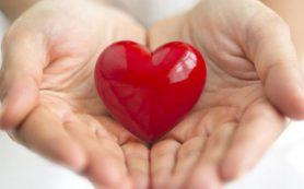 Ученые разработали сердечный имплантат, который растет вместе с ребенком