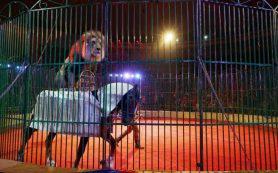 В Смоленск приедет «Шапито Евро Цирк»
