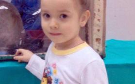 Смолян просят помочь в розыске пропавшей два года назад девочки