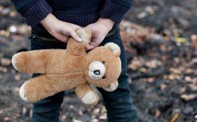 В Смоленской области искали пропавшего ребенка