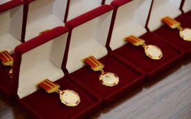 Смолянку, воспитывающую пятерых детей, наградят почетным знаком «Материнская слава»