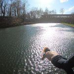 В Смоленске подростки открыли купальный сезон в Лопатинском саду
