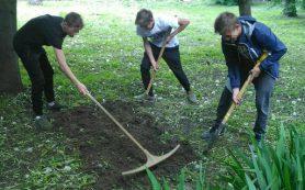 В Смоленские «трудные» дети стали волонтерами