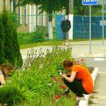 Подростки благоустраивают Смоленск