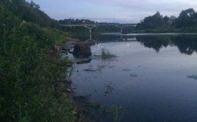 В Смоленской области следователи выясняют обстоятельства гибели трех детей