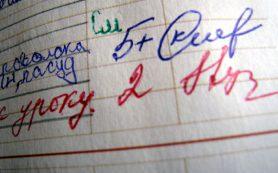 В Рособрнадзоре прокомментировали идею об отмене пятибалльной системы оценок в школах