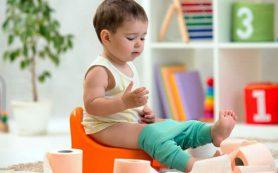 Семь советов как приучить ребенка к горшку